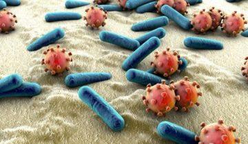 Ciencia y microbioma VIDEO II